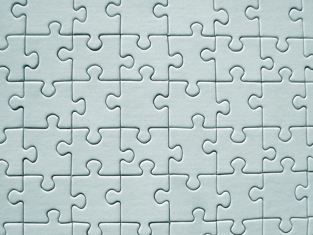 Surrogacy Puzzle