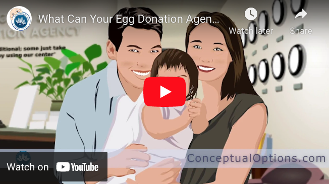 What Can Your Egg Donation Agency Do ? - Conceptual Options Intended Parent Donor Education Series YouTube ScreenShot