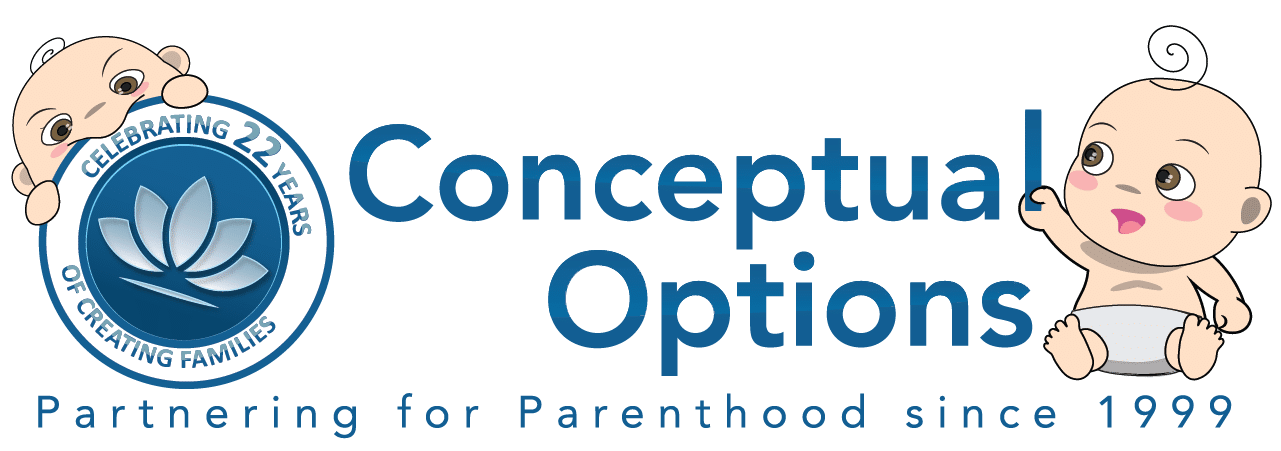 Conceptual Options Logo